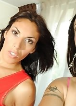 Nikki and Priscila Corbobesita in a fithy hot suck-a-thon with eachother's dicks