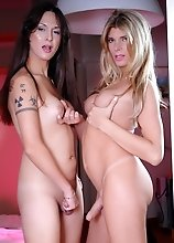Naughty tgirls Nicole and Angelina having oral