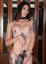 Selena Ink is back. This inked beauty is here to do some showing off for us. This tattooed chick is so fucking hot, you won't contain yourself. T